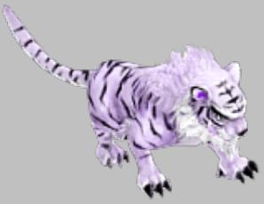 《神雕侠侣》宠物蜕变颜色对比-790